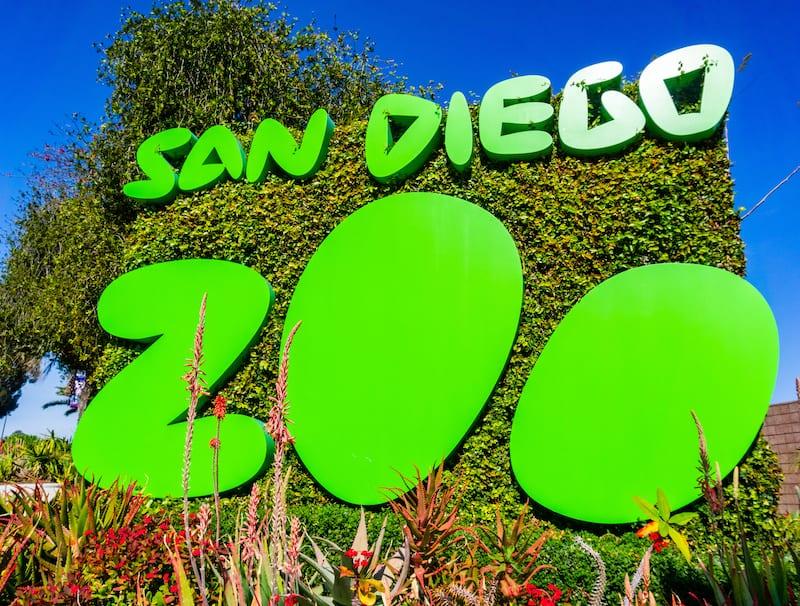 balboa park - san diego zoo