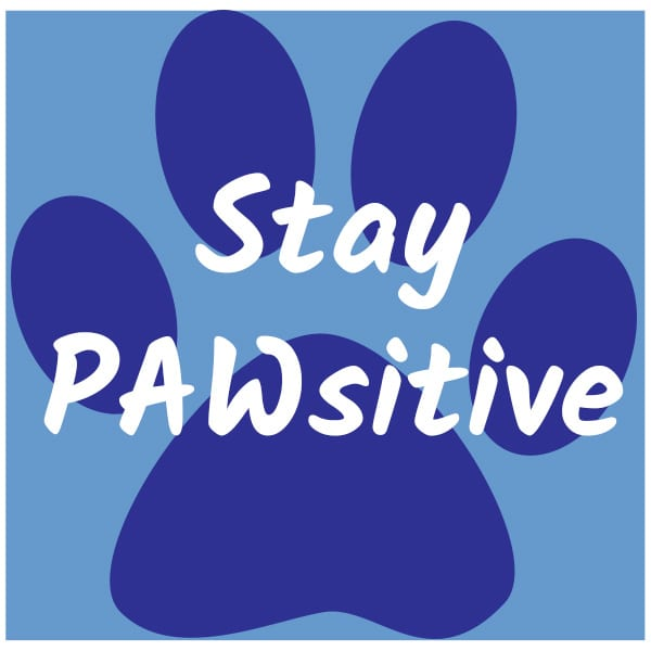 paw design with Stay PAWsitive